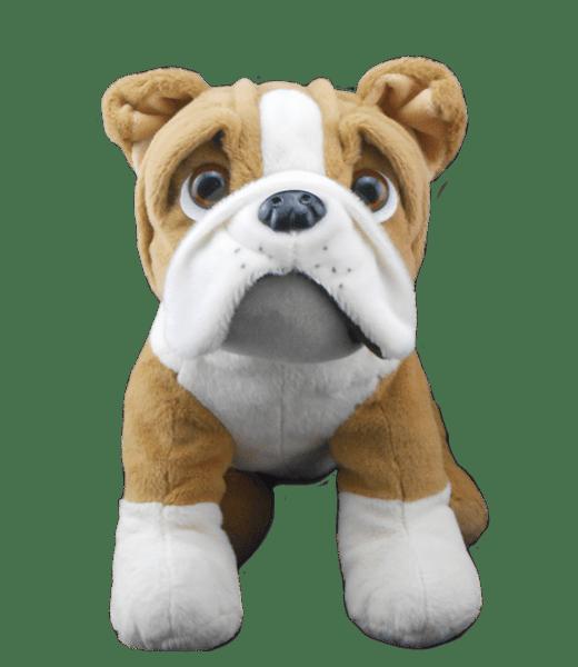 "Buddy de Bulldog, Buldog, Hondje,,knuffels ,knuffelbeest ,knuffeldier ,knuffel ,teddiebeer ,teddy ,teddie, teddybeer ,teddybear, bear, plush, Stuffed Animals, Unstuffed, Unstuffed Plush, Plushies, teddymountain, build your bear, Helmond, Nederland, zelf knuffel maken, maak je knuffel, www.makeyourteddy.nl, Shop Online, Webshop, Online Knuffels, Teddybeer, Knuffelbeer, Knuffelbeest, Knuffeldier, Knuffeltje, Teddybear, DIYKNUFFEL, DIY-KNUFFEL, Knuffel Maken, Knuffel-maken, Zelf-Knuffel-Maken, Knuffelwinkel, knuffelstore, knuffelshop, onlineknuffelwinkel, online-Knuffelwinkel, Berenshop, Berenstore, Berenwinkel, Teddybeerwinkel, Berenfijn, Berefijn, Beregoed, Berengoed, Atelier, Winkel, Webwinkel, Webshop, Brandstore, Speelgoedwinkel, Speelgoed, Toys, Trend, Online, Cadeau, Geschenk, Gift, Kado, Kids, Kinderen, Kinderfeest, Verjaardagsfeest, Geslaagd, Verjaardag, Partijtje, Feest, Vakantiepark, Bungalowpark, Camping, Animatie, Team, Kidsworkshop, Kidsparty, Kinder, Kinderen, Peuters, Kleuters, Kids, Kindercadeau, Workshop, Make-your-Teddy, Build, Your, Bear, Teddybear, Teddy-Mountain, CE, Keurmerk, Kindveilig, Getest, Kwaliteit, 8"", 16"","